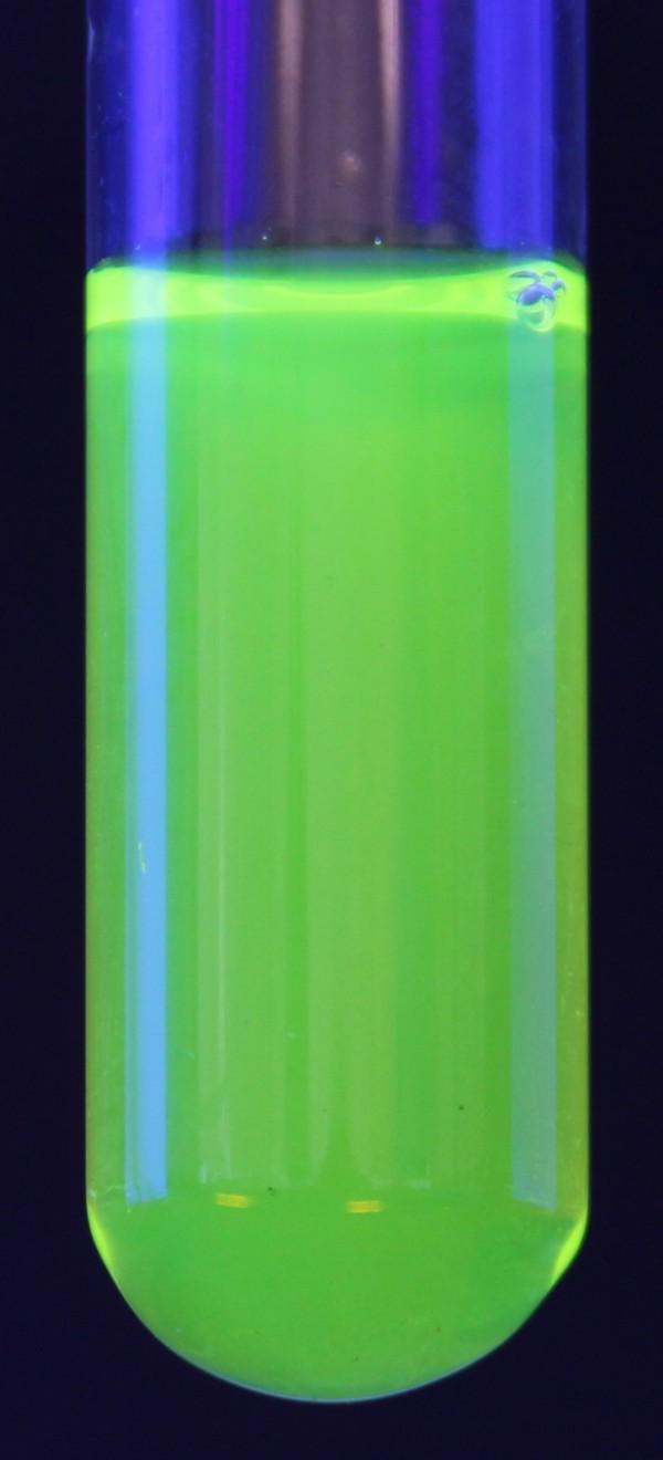 fluoresceína dentro de tubo de ensaio