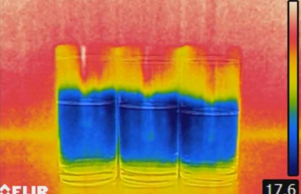 imagem térmicas de copos com água