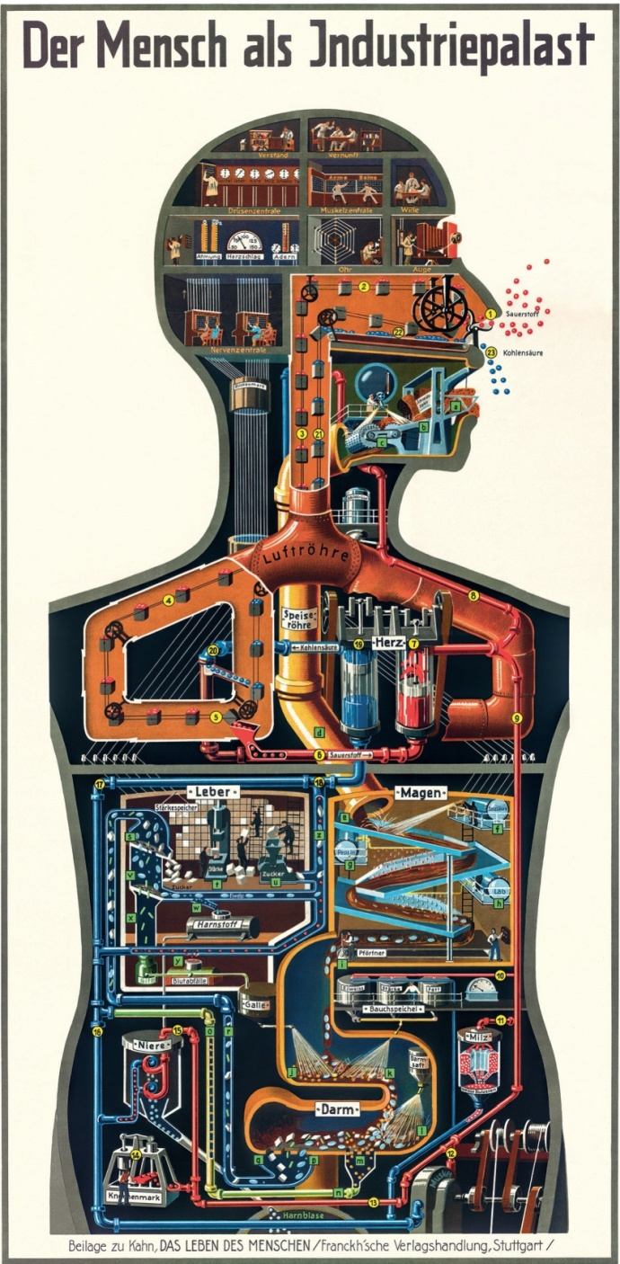 máquina humana