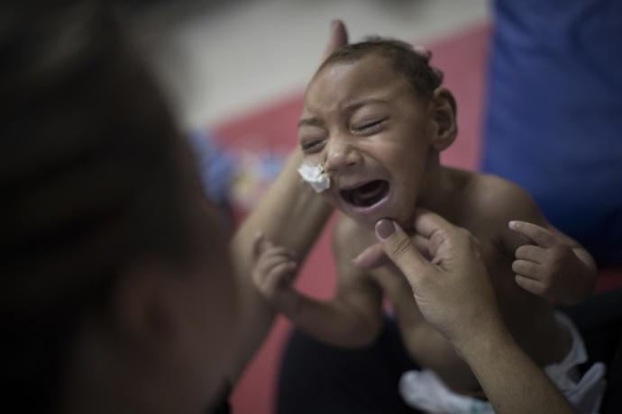 zika no brasil
