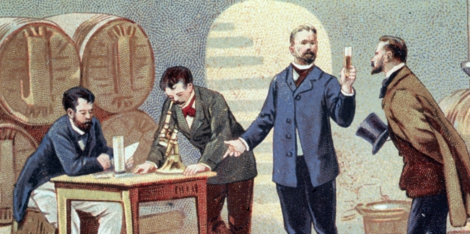 Pasteur estuda o vinho