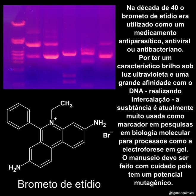 usado em laboratório de genética