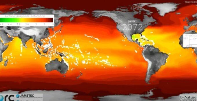 Novo estudo científico sugere taxa de acidificação dos oceanos sem paralelo nos últimos 300 milhões de anos.